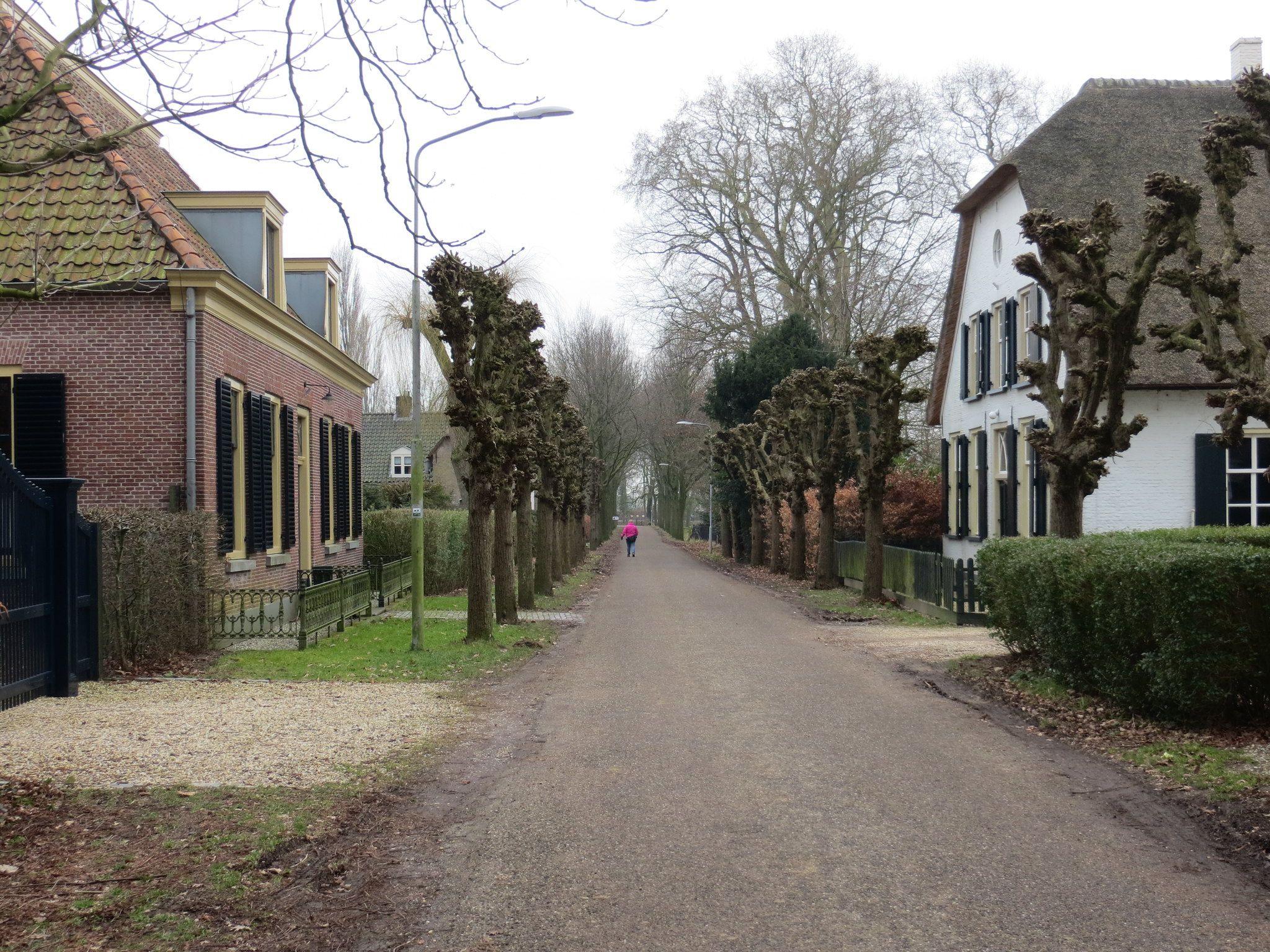 Afbeelding Laan in Wijk en Aalburg