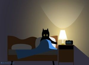 Cat switches light on and off