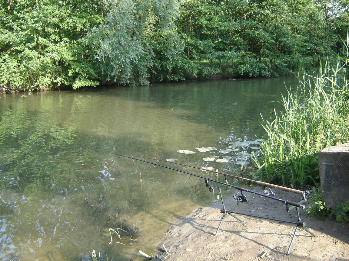 Angling rods waiting for bite