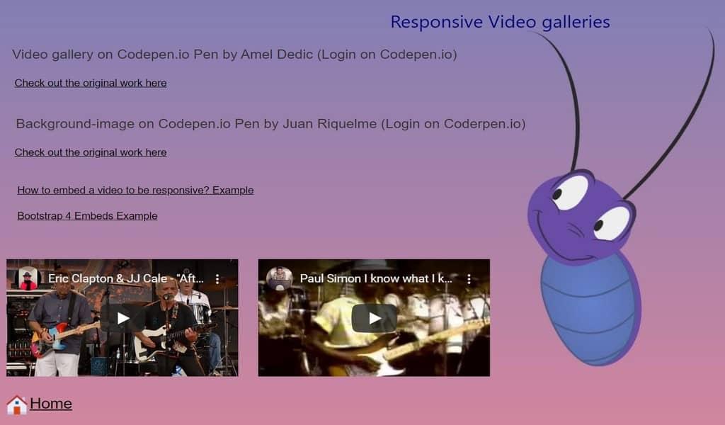 Responsive video galleries
